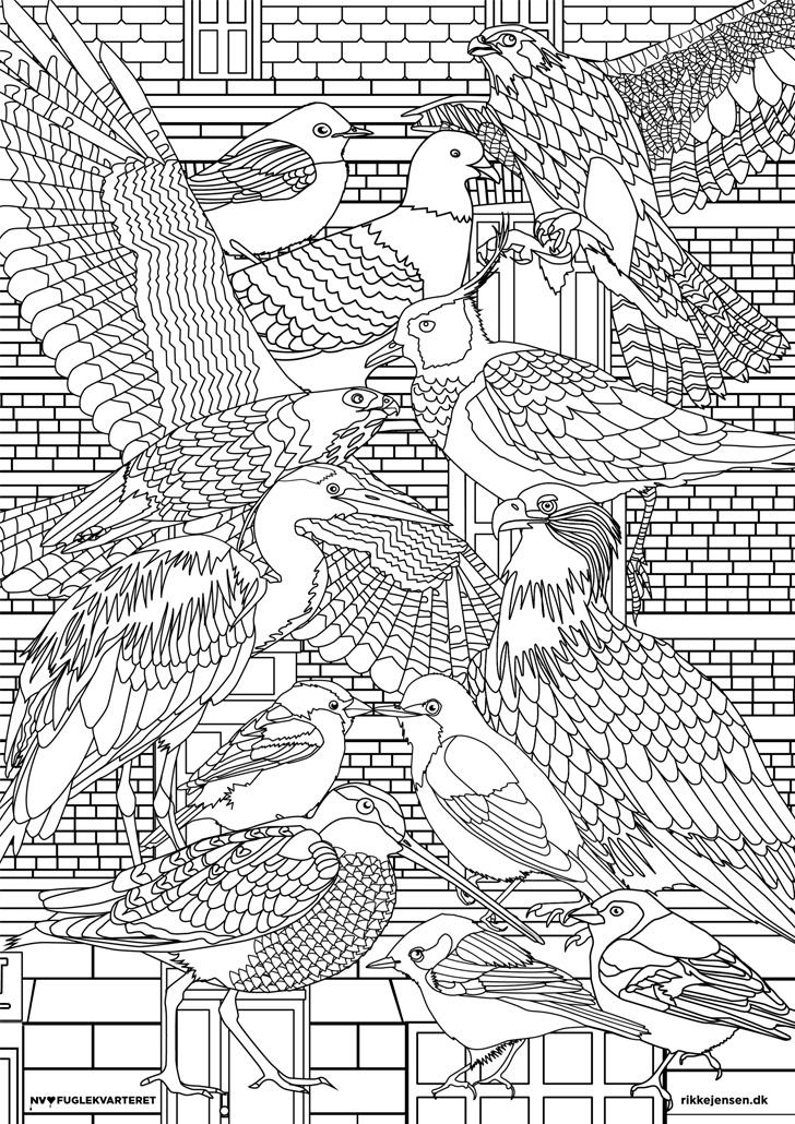 fuglekvarteret mal-selv